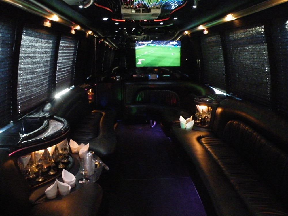 TV in Party Bus 30 Pax